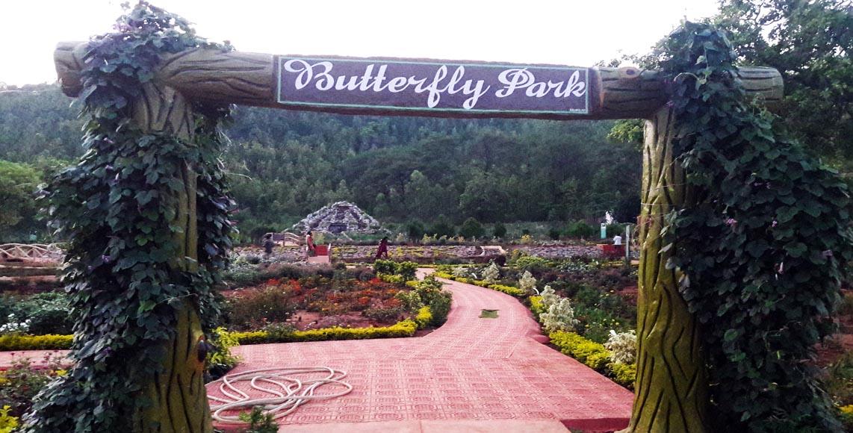 butterfly-park-1.jpg